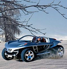 Peugeot Hoggar...looks cool to me even though I am not sure if its a car or a quad...