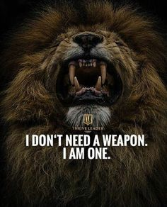 67 Top Quotes Inspirational for Success That will Inspire You Extremely 1 Wolf Quotes, Wisdom Quotes, True Quotes, 3am Quotes, Lioness Quotes, Short Inspirational Quotes, Great Quotes, Motivational Quotes, Bring It On Quotes