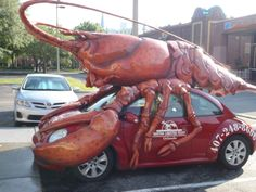 Lobster feast - International Drive, Florida