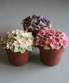Flower Pot cakes - wouldn't your mother love these mer!!!