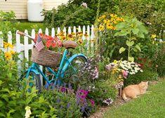 Pedals & Petals,… garden bicycles