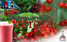 Una de las frutas más sanas, la cereza. https://www.facebook.com/JohannyVargasdra