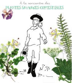 Livret PDF gratuit et sans inscription ! Lien PDF direct : https://docs.google.com/viewer?url=http%3A%2F%2Fconnectedbynature.org%2Fwp-content%2Fuploads%2F2017%2F04%2F%25C3%2580-la-rencontre-des-plantes-sauvages-comestibles-_Connected-by-Nature.pdf #plantes #sauvages
