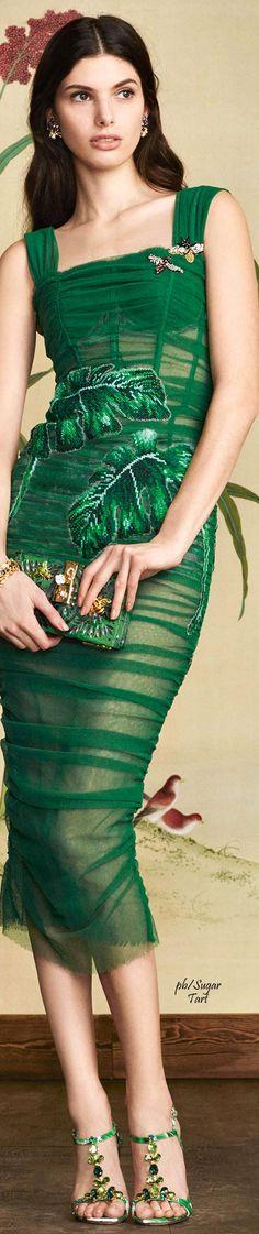 Dolce & Gabbana Winter 2017   ᘡℓvᘠ □☆□ ❉ღϠ □☆□ ₡ღ✻↞❁✦彡●⊱❊⊰✦❁ ڿڰۣ❁ ℓα-ℓα-ℓα вσηηє νιє ♡༺✿༻♡·✳︎· ❀‿ ❀ ·✳︎· WED FEB 22 2017 ✨ gυяυ ✤ॐ ✧⚜✧ ❦♥⭐ ♢∘❃ ♦♡❊ нανє α ηι¢є ∂αу ❊ღ༺✿༻✨♥♫ ~*~ ♆❤ ♪♕✫❁✦⊱❊⊰●彡✦❁↠ ஜℓvஜ