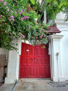 THE NOT SO LITTLE RED DOOR