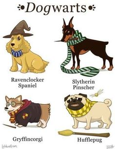 Dogwarts What is your Boggart look like? Get your HP merchs at ThinkPotter.com Get your HP merchs at ThinkPotter.com FREE Shipping Worldwide ------------------------------------------------------ #harrypotter #pottermore #potterhead #hogwarts #gryffindor #slytherin #hufflepuff #ravenclaw #hermionegranger #ronweasley #dumbledore #voldemort #emmawatson #danielradcliffe #rupertgrint #dracomalfoy #tomfelton #jkrowling #newtscamander #snape #quidditch #hedwig #gobletoffire #harrypotterfilm…