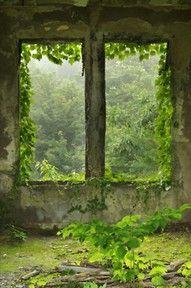 abandonada y atrapada por la naturaleza