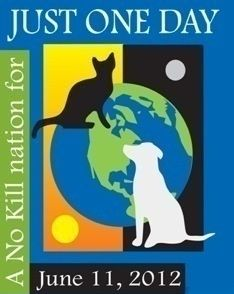 Ask your local shelter to participate. June 11, 2012 no kill day  www.justoneday.ws/