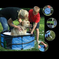 Save 65 on a portable collapsible dog wash bath tub only 3499 outdoor pet bath or pool by etna products solutioingenieria Gallery