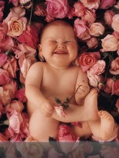 Love Anne Geddes baby photos!