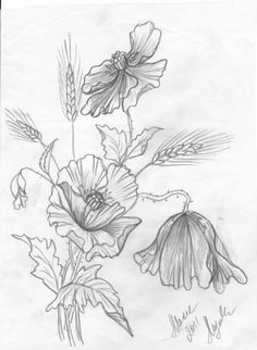 Colouring Pics, Coloring Books, Coloring Pages, Embroidery Transfers, Embroidery Designs, Realistic Flower Drawing, Drawing Sketches, Art Drawings, Fabric Painting