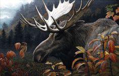 """Edward Spera - Wildlife Artist - .... """"CHANGING SEASONS - Moose"""""""