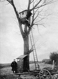 A German Army observation post in a tree.