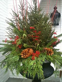 How to make your own winter planter arrangement - this is larger than I would want, but but love the colour and naturalness of it, and the blog it comes from has a step by step!  http://5thandstate.blogspot.com/2011/11/winter-urns-tutorial.html