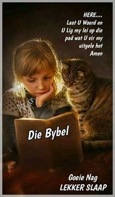 Of course I talk to my cats! I also talk to my dogs. Cats Bus, Cats And Kittens, Kitty Cats, Trauma, Afrikaanse Quotes, Goeie Nag, Go For It, Sleep Tight, Pet Memorials