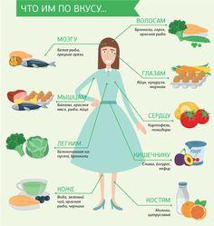 Худеем правильно - Анатомия питания