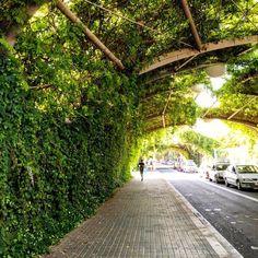 Carrer d'Espronceda #Poblenou #Barcelona