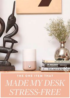 Life Hacks : This Self-Care Item Has Turned My Office Desk into a Stress-Free Zone Home Office Decor, Office Desk, Anxiety Support Groups, How To Store Potatoes, Anxiety Panic Attacks, Workspace Design, Slow Living, Inspired Homes, Stress Free