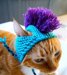 What cat doesnt need a mohawk cat hat?! This cat hat / cat costume was made with aqua and purple acrylic blend yarns and fits an average sized adult