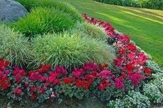 Idea for flower beds that doesn't require so much dead-heading