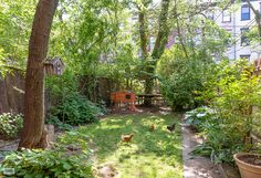 Quirky Clinton Hill Summer Rental Is Lovely, and a Little Weird - On the Rental Market - Curbed NY