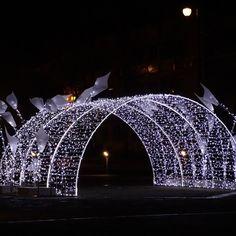 Christmas Lights Outside, Christmas Light Displays, Xmas Lights, Outdoor Christmas Decorations, Light Decorations, Christmas Maze, Christmas Night, Wedding Walkway, Wedding Entrance