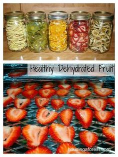 Dehydrated fruit is great for snacking. make batches of apples, pears, strawberries & kiwi separately; store in jars, then mix them for fun, colorful healthy snacks! Dehydrating fruit is easy. Use a mandolin to cut to an even consistency, storing dried fruit in airtight containers can last for months in the pantry! Also add dried fruit to granola, yogurt or baking!  Google The Dehydrator Bible for tips.