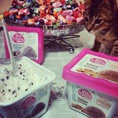 Kedicik dondurmanın peşinde, çok yer ya... xxl şeker kavanozu shoco durama şahit... #lerafresca #kitten #cat #icecream