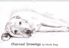 Charcoal Drawings - CALVENDO