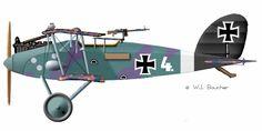Halberstadt CL.II - 1916