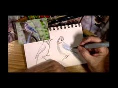 Sketching Birds with Cathy Johnson - YouTube