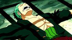"""Zoro wake up you've been captured again""!"