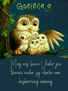 Good Morning Good Night, Good Night Quotes, Good Morning Wishes, Xhosa, Good Night Blessings, Goeie Nag, Goeie More, Afrikaans Quotes, Good Night Sweet Dreams