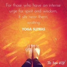 #theyogawild #yoga #yogainspiration #igyoga #instagood #igyogis #yogagirl #yogalife #yogalove #yogaeverydamnday #spirit #gratitude #mindfulness #love #magic