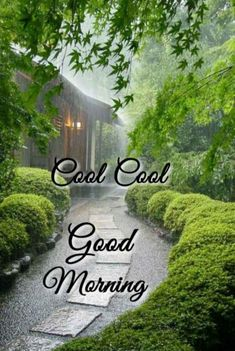 Good Morning Friends Images, Good Morning Wishes, Good Morning Quotes, Good Morning Inspiration, Cute Love Wallpapers, Dil Se, Courtyards, Meaningful Quotes, Mornings