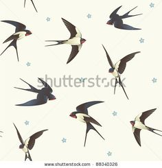 Swallows in flight...design options.