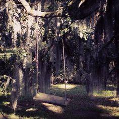 Swing at Louisiana plantation