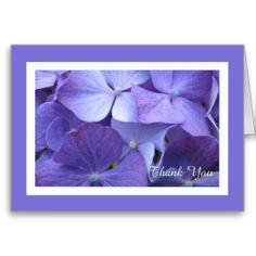 Shop Hydrangea Flower Blank Thank You Card created by KathyHenis. Thank You Greeting Cards, Thank You Greetings, Thank You Note Cards, Custom Thank You Cards, Button Flowers, Pink Flowers, Bridesmaid Thank You Cards, Chevron Birthday, Thank You Flowers