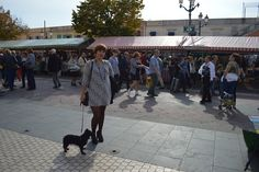 Sophie's ticket: Cours saleya