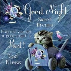 Praying you get a good night's rest good night quote good night sayings good night sweet dreams good night pic good night pictures with quotes Good Night Cat, Good Night Thoughts, Good Night Sister, Lovely Good Night, Good Night Love Quotes, Good Night Prayer, Romantic Good Night, Good Night Friends, Good Night Blessings