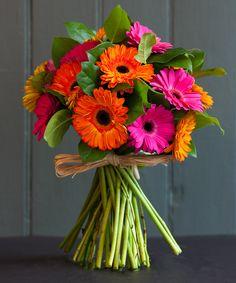 The Gerbera Bouquet Gerbera Daisy Bouquet, Gerbera Wedding, Gerbera Flower, Tulip Bouquet, Flower Bouquet Wedding, Flower Vases, Gerbera Daisy Centerpiece, Gerbera Daisies, Tall Centerpiece
