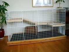 Cages A cage is a dedicated space for your rabbit. Cages closely relate to the dens that a female rabbit w… Diy Bunny Hutch, Diy Bunny Cage, Bunny Cages, Indoor Rabbit House, Indoor Rabbit Cage, House Rabbit, Cavy Cage, Pet Cage, Ferret Cage