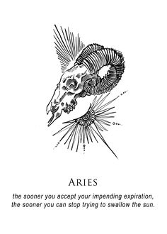 shitty horoscopes book iii: petty existential crises (aries)