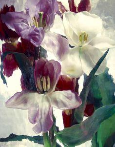 Artist Andrzej Pluta Magic garden 54
