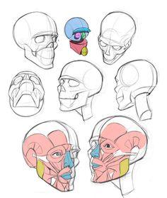 Anatomy Drawing Tutorial ArtStation - Drawing tips , TB Choi - Figure Drawing Tutorial, Male Figure Drawing, Cartoon Drawing Tutorial, Figure Drawing Reference, Anatomy Reference, Cartoon Drawings, Drawing Tutorials, Eye Drawings, Pose Reference