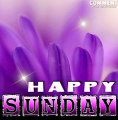 Happy Sunday via www.Facebook.com/PurpleIsWho