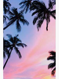 Beautiful Pink Sunset Palm Trees Canvas Print