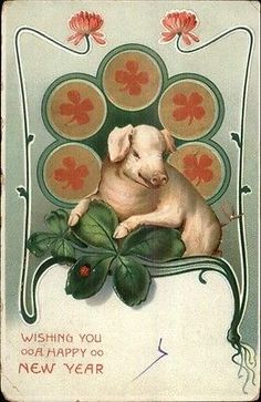 New Year - Pig & 4-Leaf Clovers c1910 Postcard