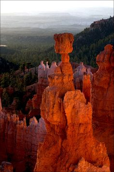 Bryce Canyon #Utah #USA