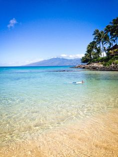 """Snorkeling Maui Napili Bay, Maui  """"Great place for snorkeling. Saw three turtles close to shore once. It was beautiful!"""""""